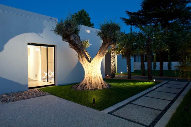 arbre maison exception